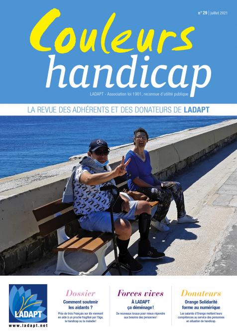 ladapt_couleur_handicap_29_couv.jpg